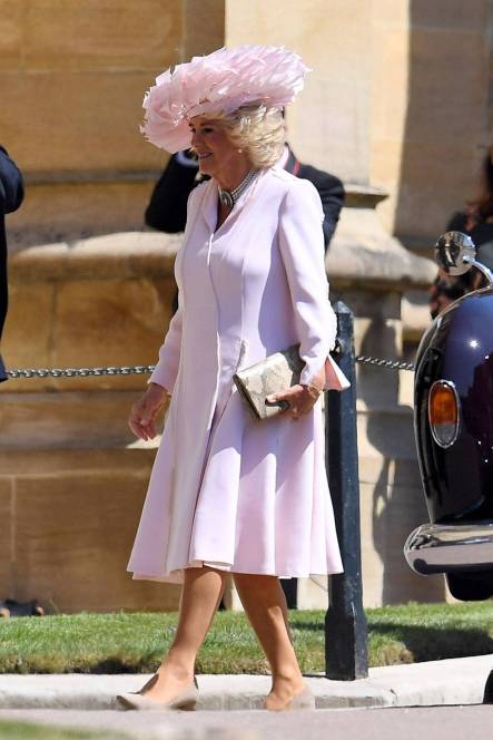 Dutchess of Cornwall in Anna Valentine.jpg